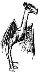 Jerseydevil