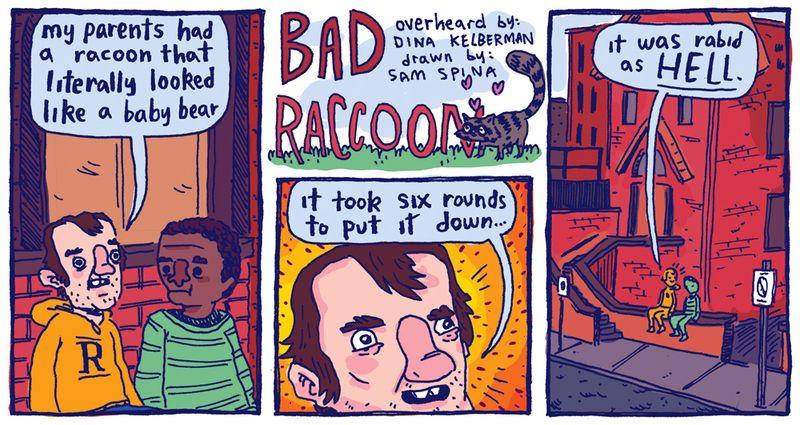 Badraccoonweb