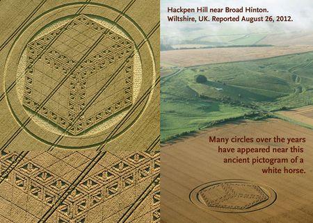 My fave crop circle3