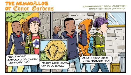 1_2_13Armadillos-of-Ednor-Gardens-Web